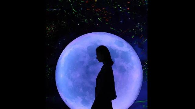 湖北光影星空藝術館 貼心服務「廣州瓦力游樂設備供應」