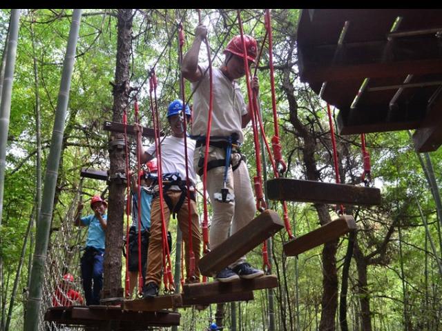 青海叢林穿越設備 來電咨詢「廣州瓦力游樂設備供應」