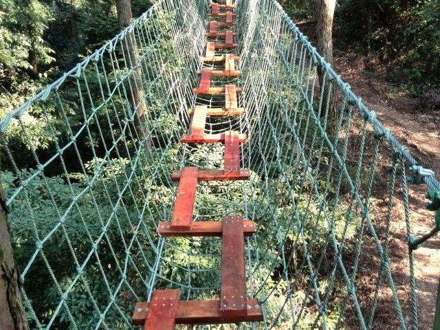 天津丛林穿越生产厂家