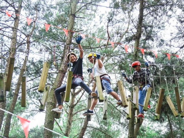 江蘇叢林穿越保養 客戶至上「廣州瓦力游樂設備供應」