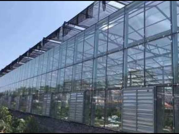 观光温室大棚 服务至上「山东省沃阳农业供应」