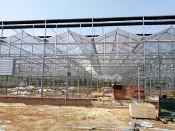 大拱棚温室,温室
