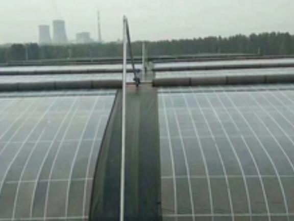 智能温室大棚公司 推荐咨询「山东省沃阳农业供应」