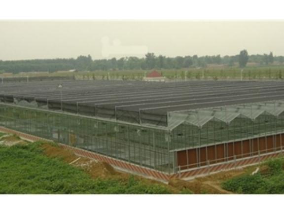 玻璃温室大棚厂商 抱诚守真「山东省沃阳农业供应」