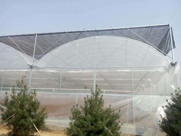 玻璃智能连栋温室制造,连栋温室