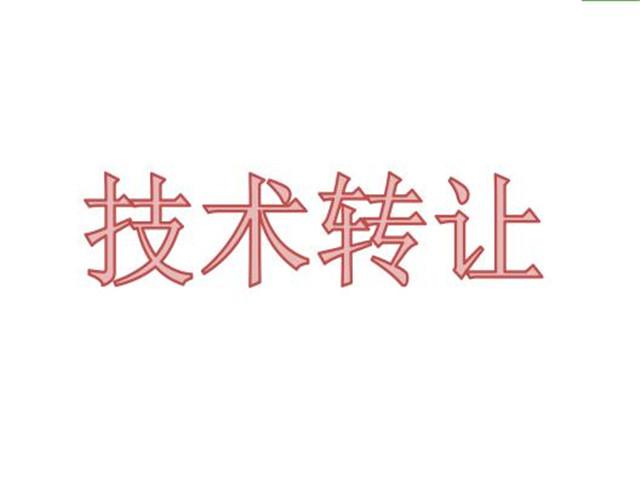 北京正规技术服务供应商