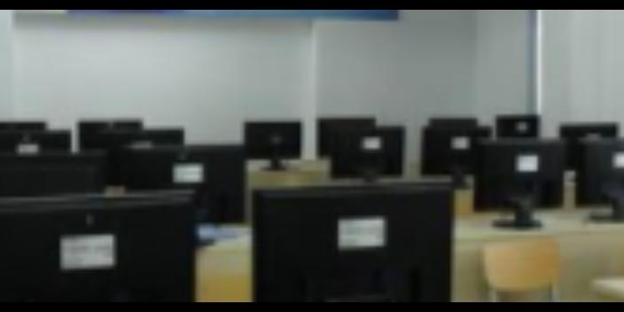 广东个性化软件开发哪里好
