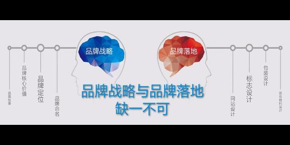 四川智能品牌策劃口碑「藍天文化傳媒」