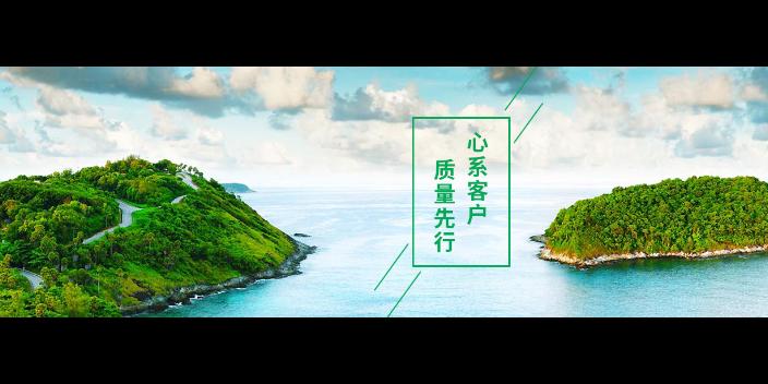 江苏品质计算机网络技术推广经历