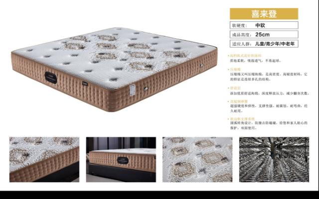 浙江常見乳膠床墊代理商 有口皆碑「佛山市穗寶尊品家具供應」
