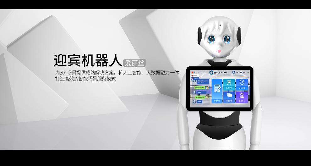 杭州送*机器人 昆山新正源机器人供应