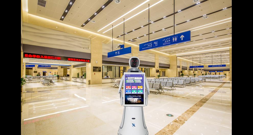 黑龙江党建大厅机器人厂家 昆山新正源机器人供应