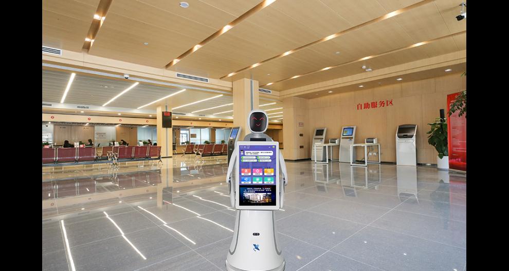 湖北稅務大廳機器人怎么樣 昆山新正源機器人供應