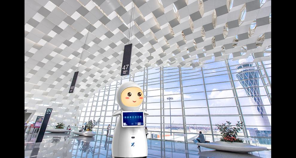 陕西行政服务大厅机器人,大厅机器人