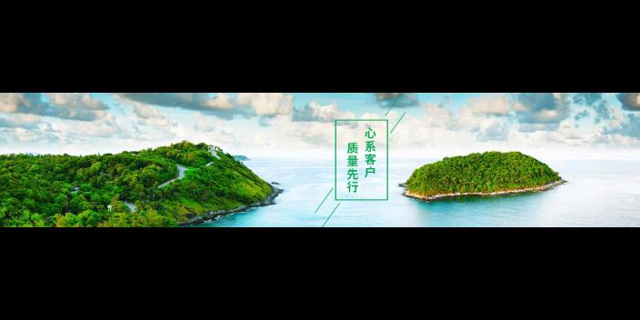 杨浦区什么是教育咨询服务铸造辉煌「学乐教育信息咨询(上海)有限公司」