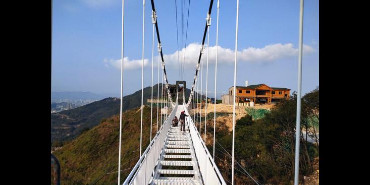 山东挑战桥安装厂家 欢迎来电「名扬景区游乐用品供应」
