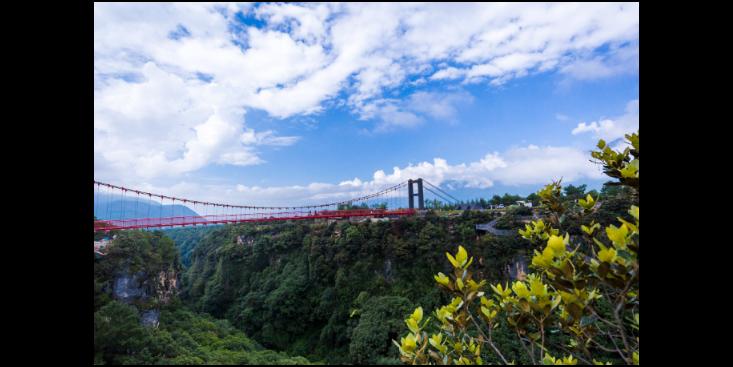 北京挑战桥设备 来电咨询「名扬景区游乐用品供应」