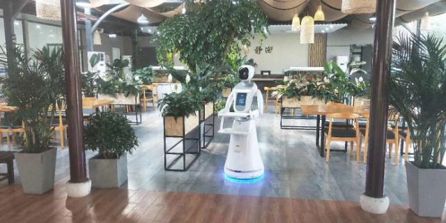 河南服务机器人厂家 贴心服务 昆山新正源机器人智能科技供应