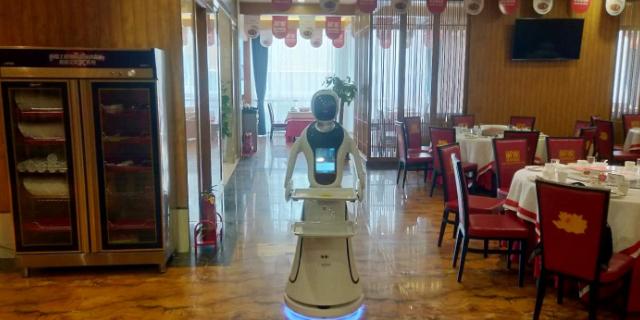 北京性能**服务机器人应用范围,服务机器人