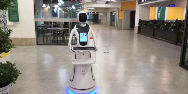 黑龙江定制服务机器人问答知识 值得信赖 昆山新正源机器人智能科技供应