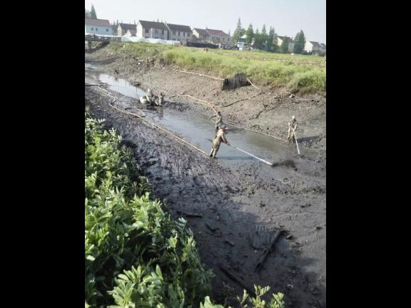 山东湖泊河道疏浚清理价格「洋霖环境治理供应」