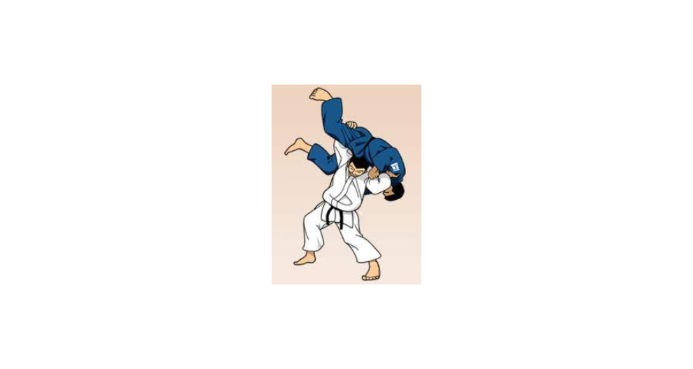 黄浦合气柔术教学,柔术