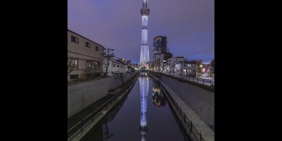 上海新能源固定专业照明批量定制 上海赢镇