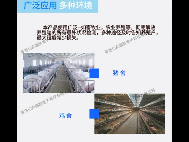 物聯網智能養殖環控器廠家 有口皆碑 青島億眾物聯供應