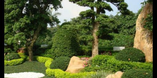 咸寧庭院園林綠化施工 服務為先「鄢陵沃鑫園林綠化工程供應」