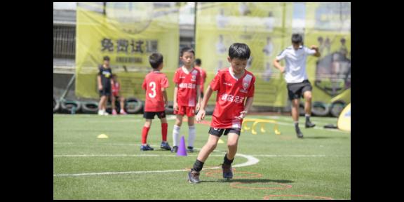 罗湖体育培训机构排名 欢迎来电「深圳市翊启体育供应」