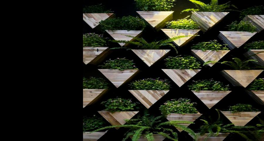 閔行室內綠化服務,室內綠化