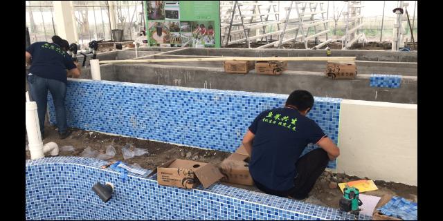 珠海娱乐鱼菜共生系统 值得信赖 江苏渔泽清供应