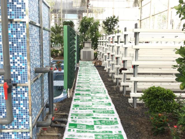南京亲子互动生态农场场地 值得信赖 江苏渔泽清供应