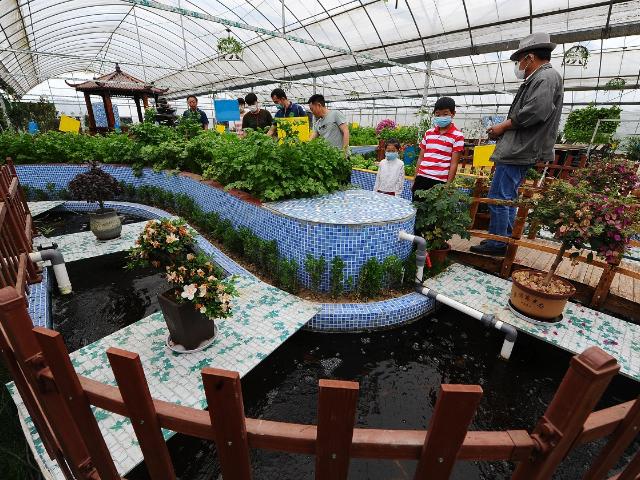 南通养生生态农场大棚 创造辉煌 江苏渔泽清供应