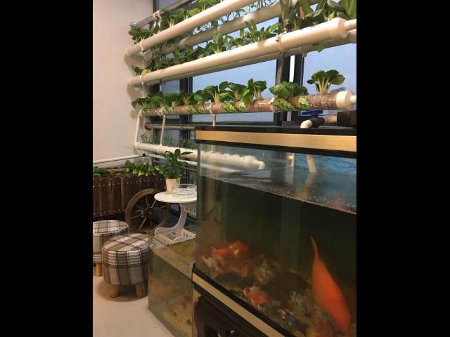 西安低碳**生态农场多少钱 服务至上 江苏渔泽清供应
