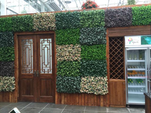 上海栽培农业园设计 服务为先「江苏渔泽清供应」