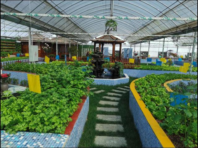 珠海种植农业园哪家好 服务至上 江苏渔泽清供应