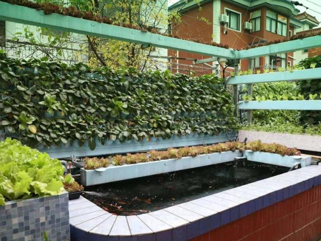 重庆种植农业园方案 和谐共赢 江苏渔泽清供应