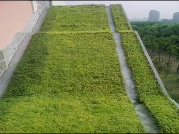 江苏特制绿化工程值多少钱