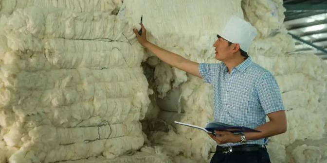 镇江良好棉花商业承诺 欢迎来电 中恒大耀纺织供应