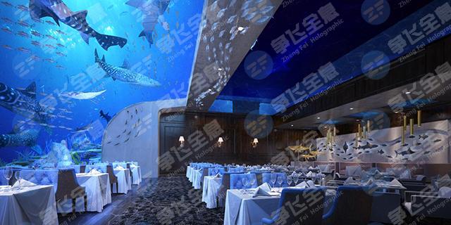 南京国外3d全息餐厅「上海争飞实业供应」