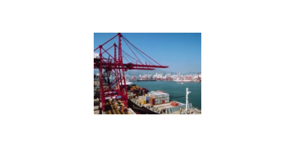静安区运营贸易服务专业服务