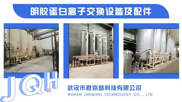 北京两性离子交换树脂
