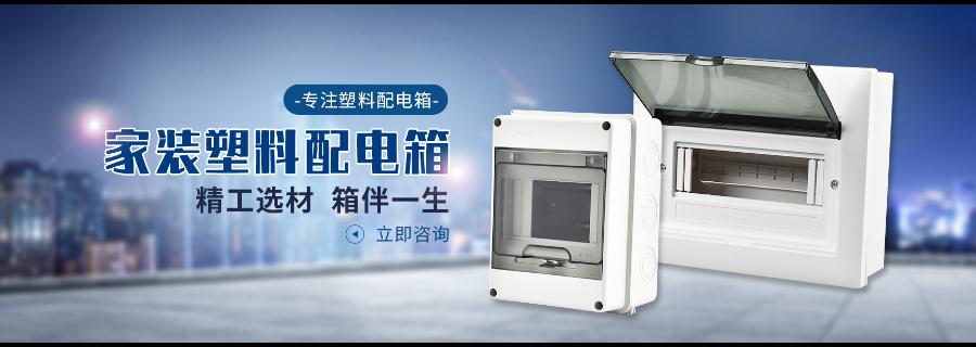 北京室内配电箱 服务为先「温州中信电子科技供应」
