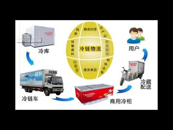 济南蔬菜冷链物流服务价格 推荐咨询「上海卓运物流供应」
