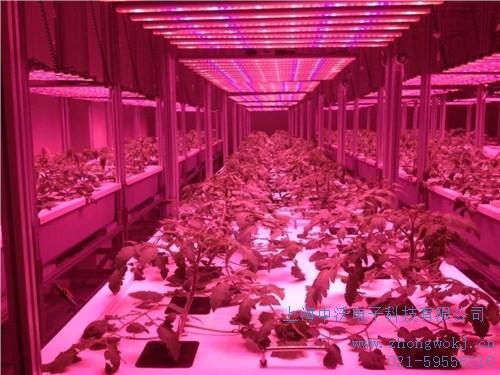 提供上海市恒温恒湿洁净室多少钱中沃供