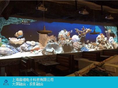 福建创意展厅投影怎么样 上海音维电子科技供应「上海音维电子科技供应」