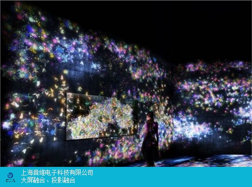 陕西主题展厅投影类型 上海音维电子科技供应「上海音维电子科技供应」