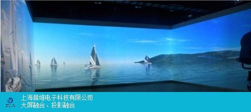 江苏互动展厅投影沉浸式 上海音维电子科技供应「上海音维电子科技供应」