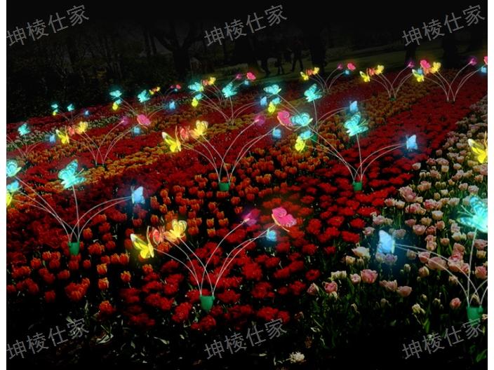深圳光纤灯报价 欢迎来电「坤棱灯饰厂供应」